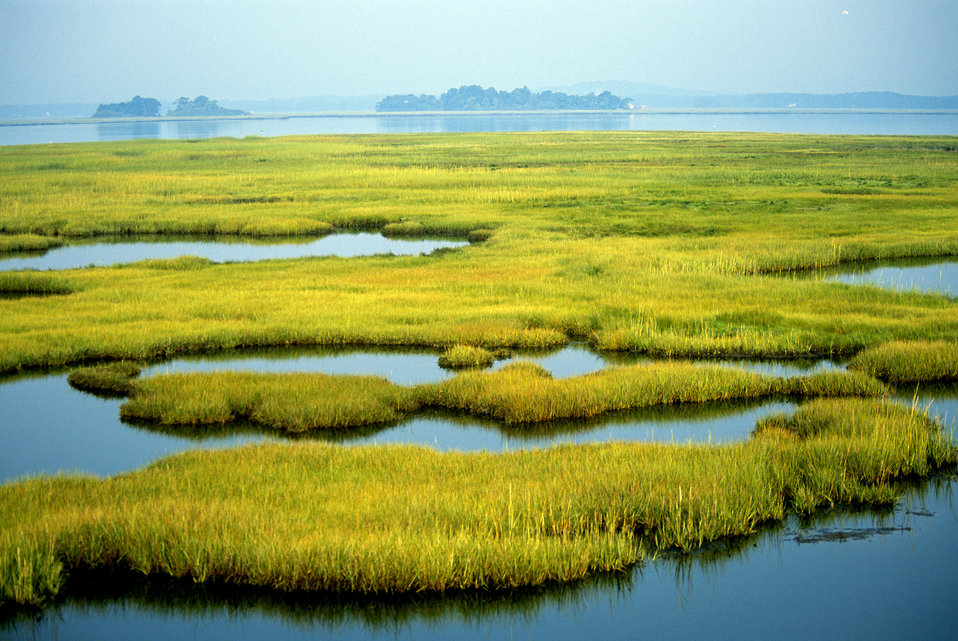 Photo of the Week - Coastal Wetlands (MA)