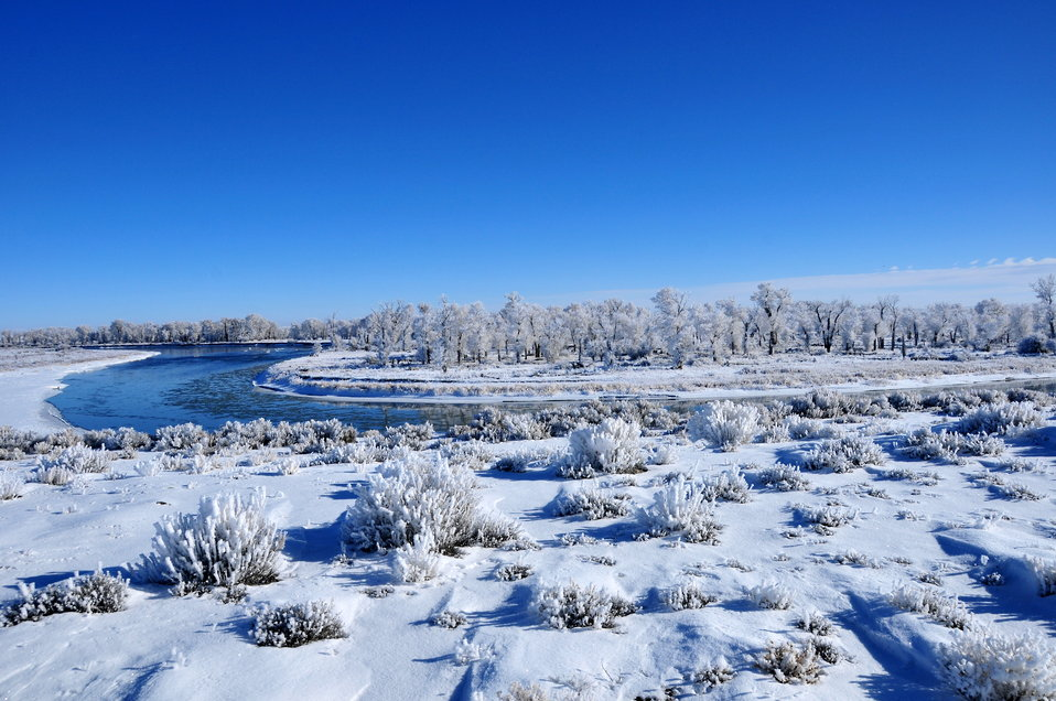 Green River on Seedskadee NWR in Winter