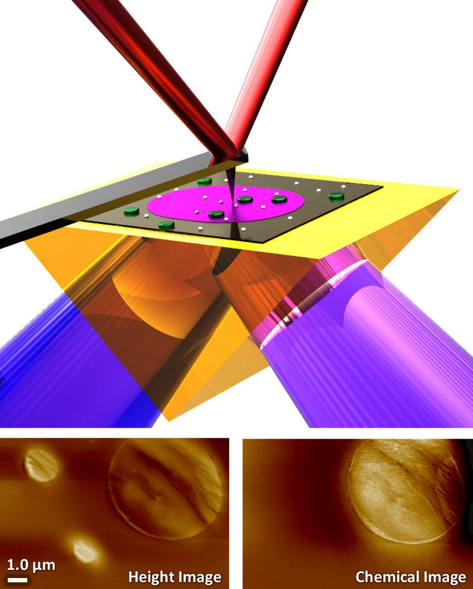 Photothermal Induced Resonance (PTIR)