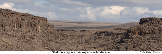 Expansive landscape - Sheldon NWR