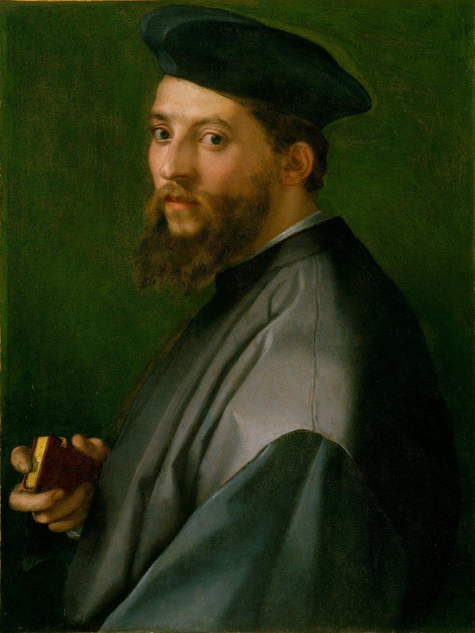 Andrea del Sarto - Ritratto di un uomo (MET Museum of Art, NYC).jpg