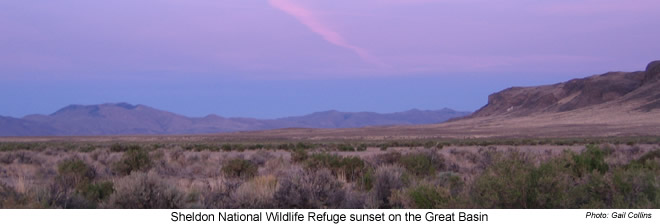 Sunset on great basin - Sheldon NWR