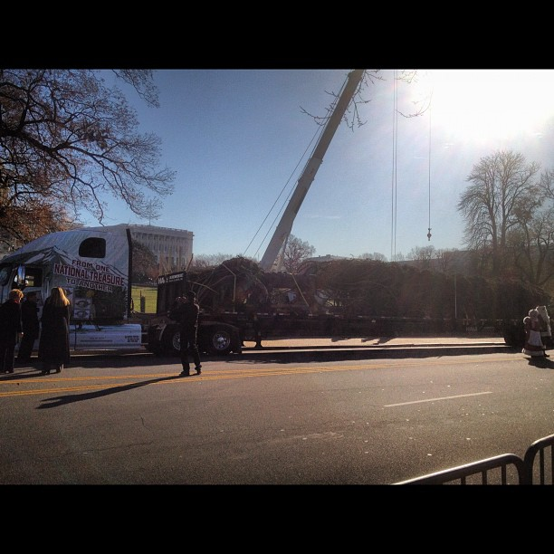 Capitol Tree has arrived.