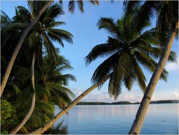 Palmyra Lagoon - Palmyra Atoll NWR