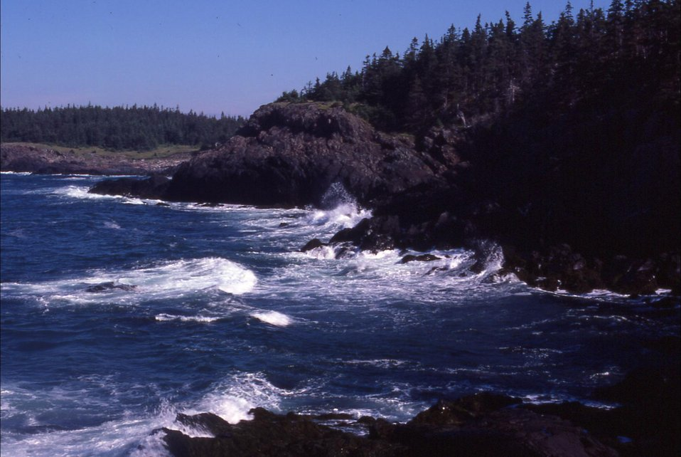 Cross Island, ME - rugged shore