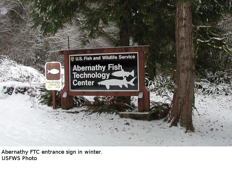 Entrance sign in snow at Abernathy Fish Technology Center