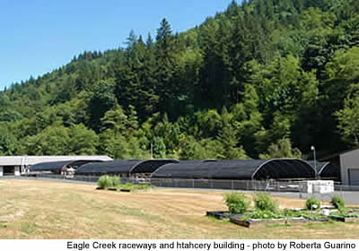 Eagle Creek National Fish Hatchery