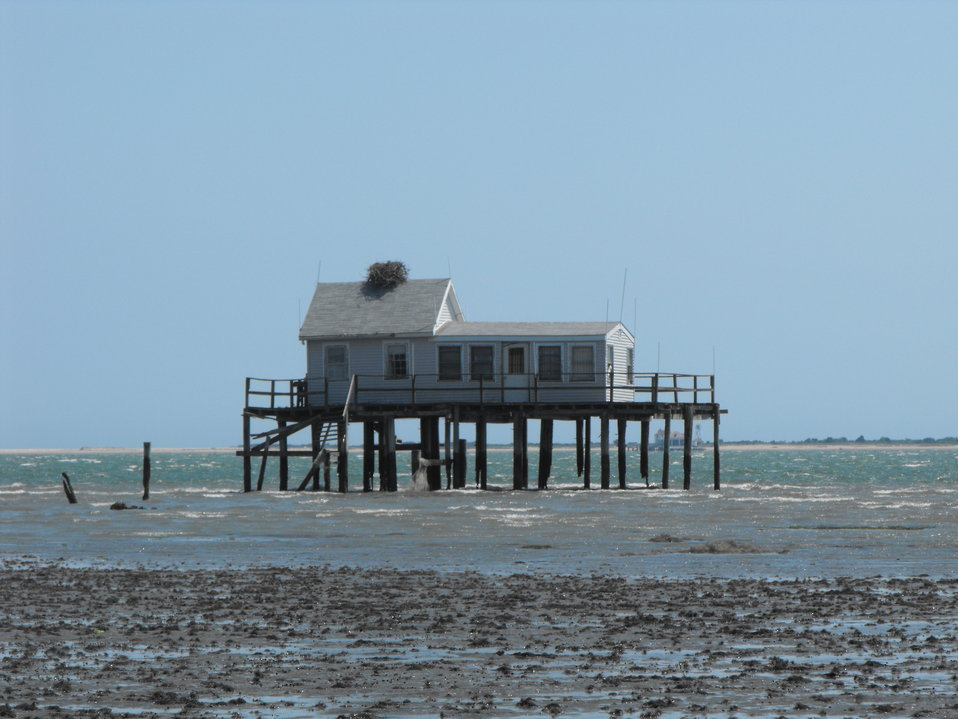 Sunday House and osprey nest
