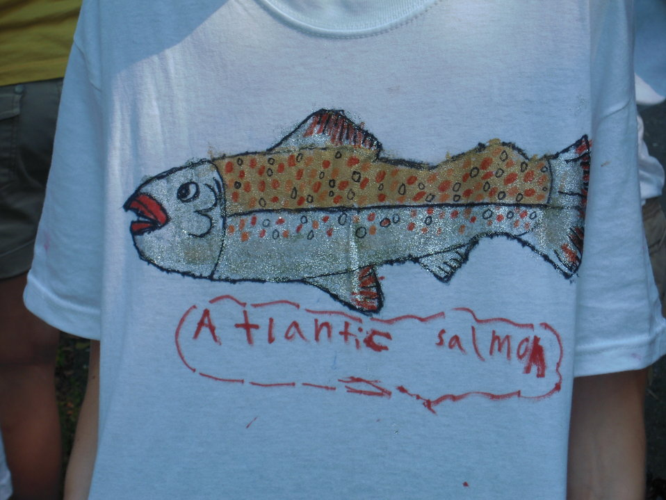 Student-made Atlantic salmon T-shirts