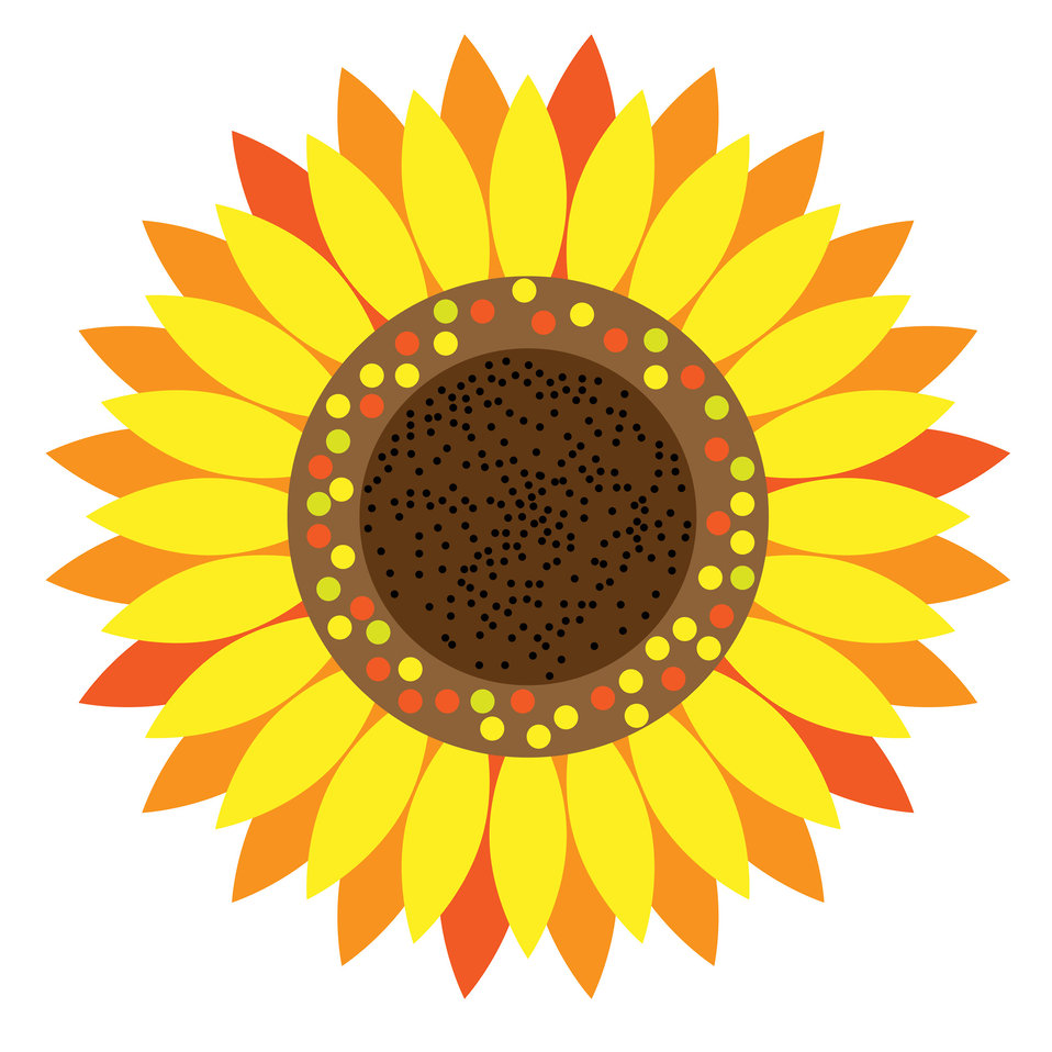 Sunflower floral clipart