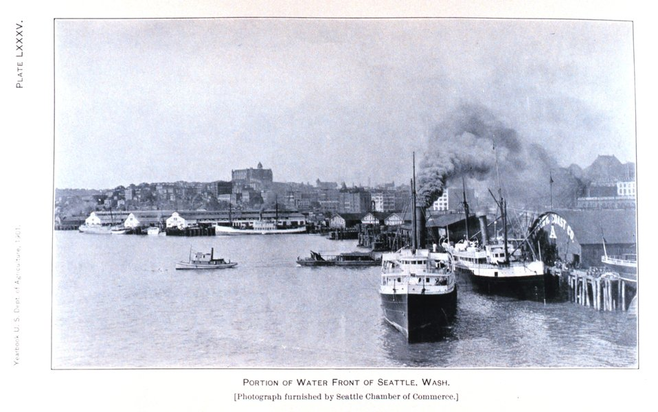 Seattle, Washington, waterfront. In:'Wheat Ports of the Pacific Coast' by Edwin  S. Holmes, Jr.  Published in: Yearbook of the United States Department of Agric ulture 1901.  Plate LXXXV, p. 572. Library Call Number S21 .A2 .