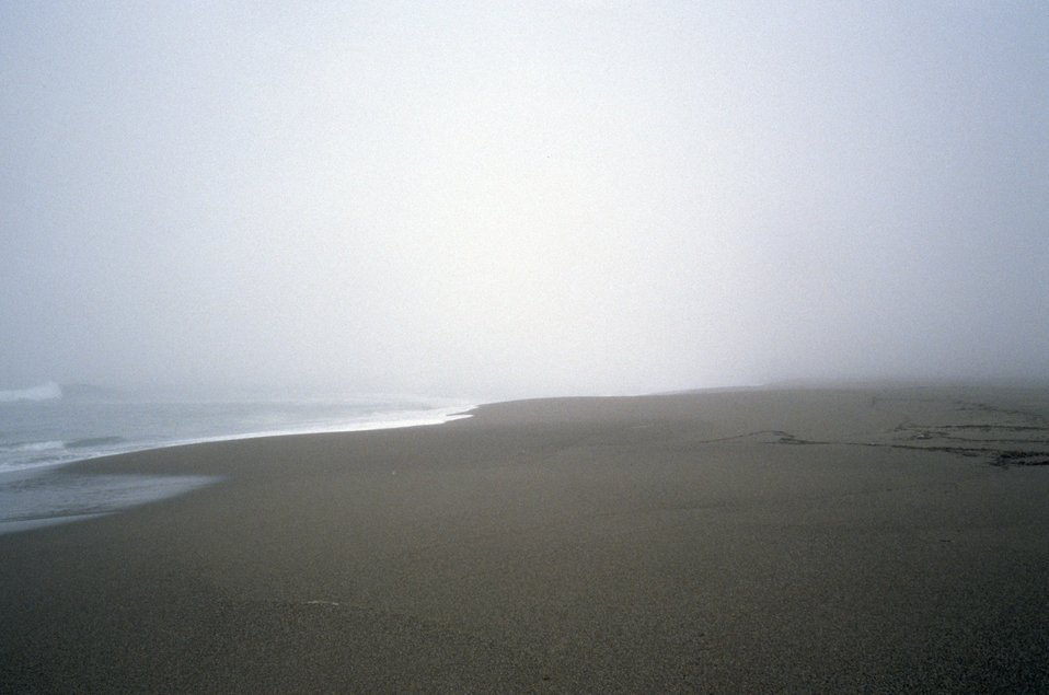 Point Reyes Great Beach.  Sun beginning to shine through the fog.
