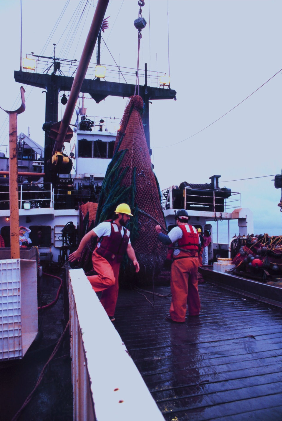 Trawling operations on the MILLER FREEMAN.  A full net-load of fish brought aboard.  The cod end is being lifted.  It will be dumped in the checker, i.e, the sorting table.