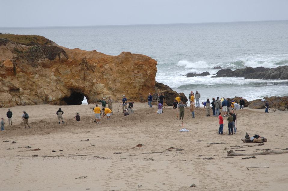 Pescadero Breach 9