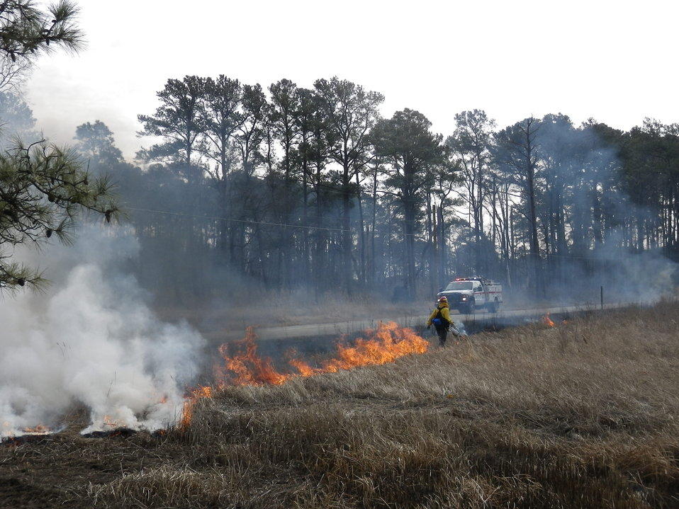 Fire management at Eastern Neck National Wildlife Refuge brackish marsh burn
