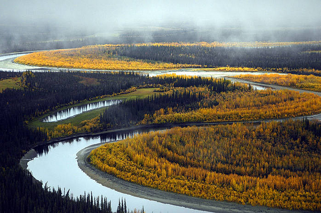south fork, Koyukuk river