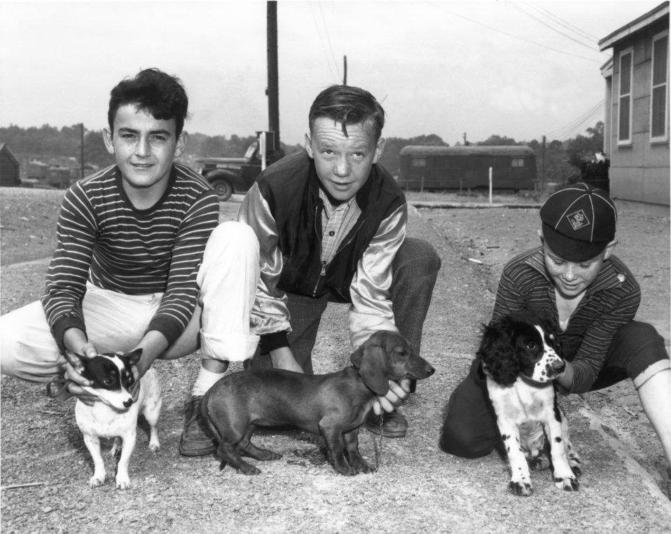 Dog Show Oak Ridge