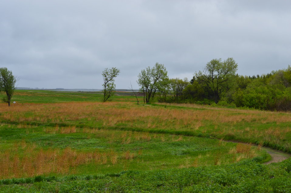 Landscape behind Audubon NWR visitor center