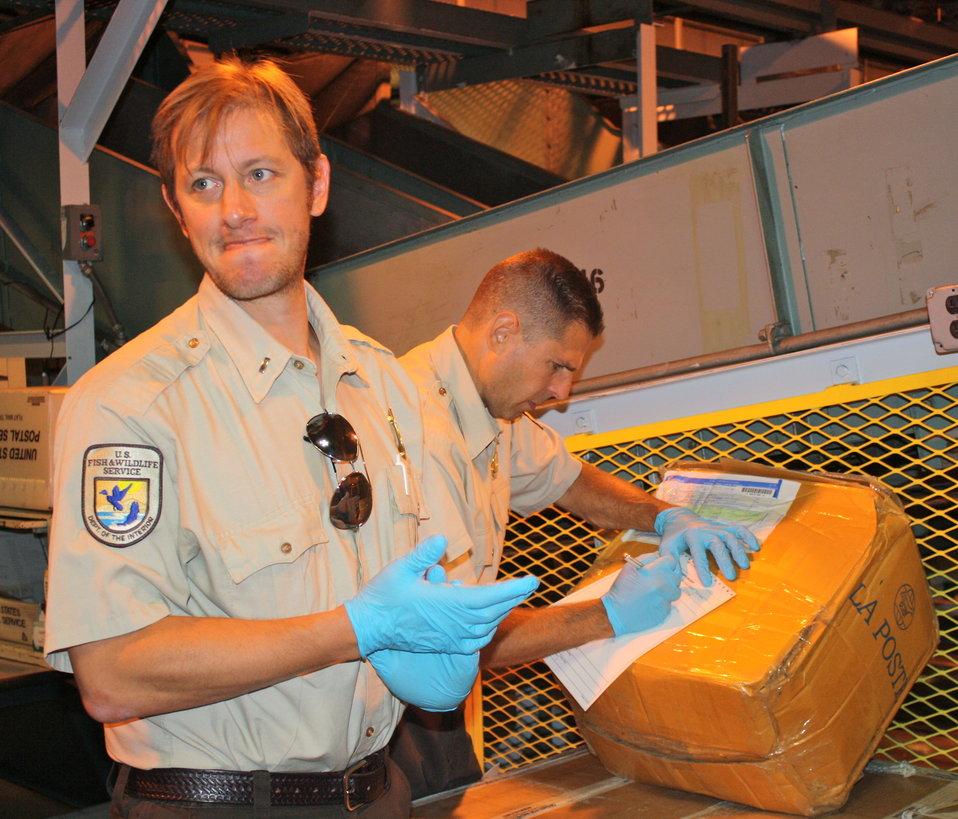 Inspecting a shipment at the U.S. Postal Service facility in ELizabeth, N.J.