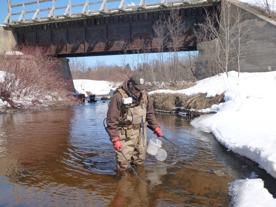 Matt Symbal electrofishing the Rock River, Alger County MI.