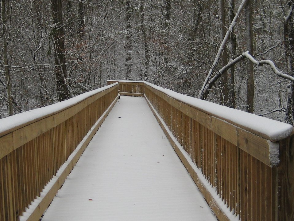 Washington Ditch Boardwalk