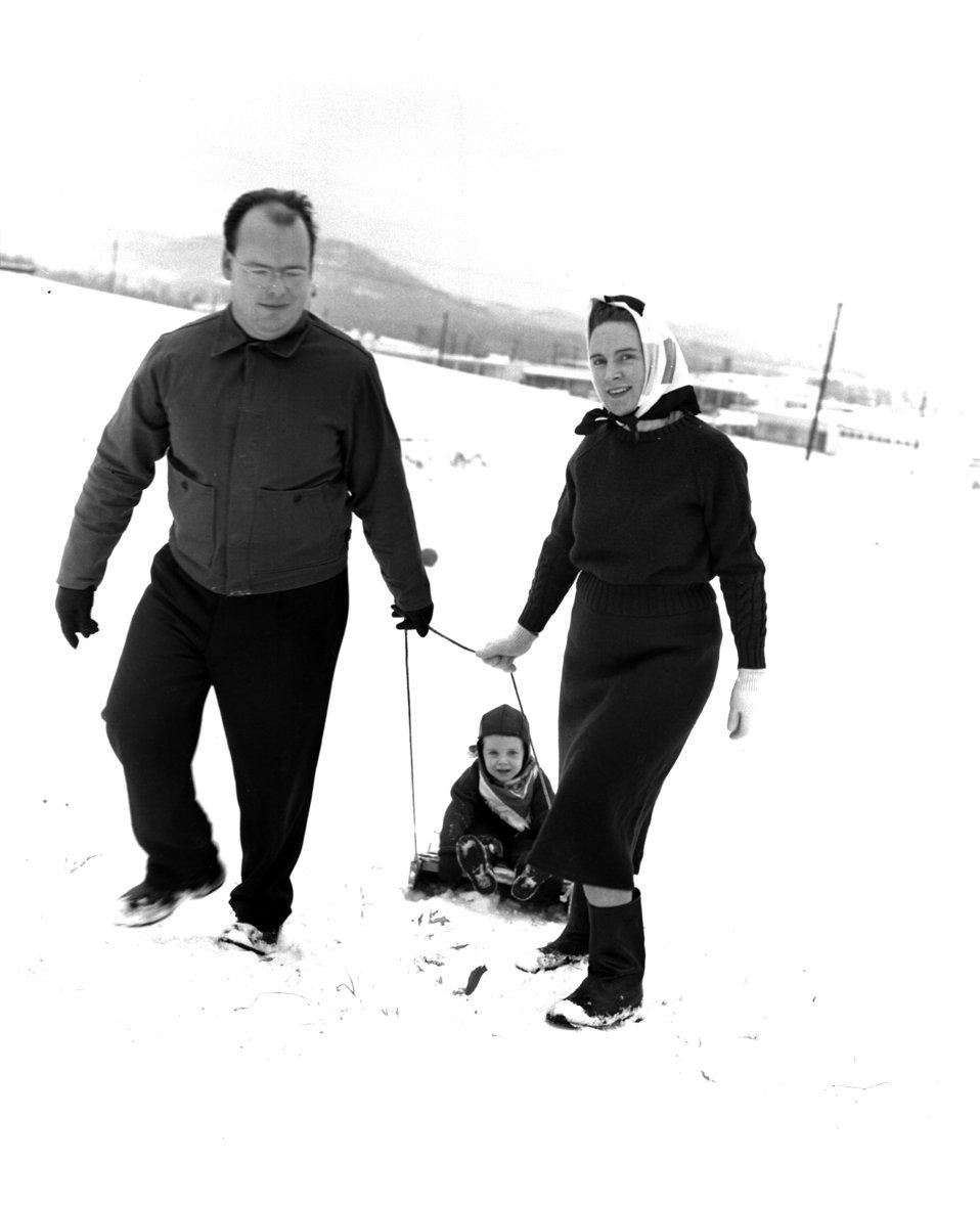 Fun in the Snow 1