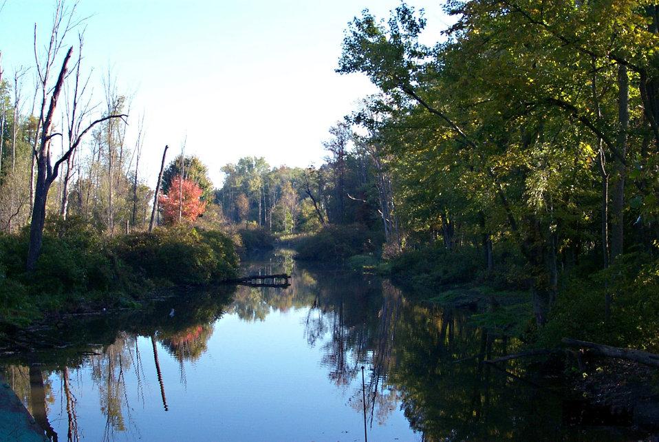 Photo of the Week - Oak Orchard Creek (NY)