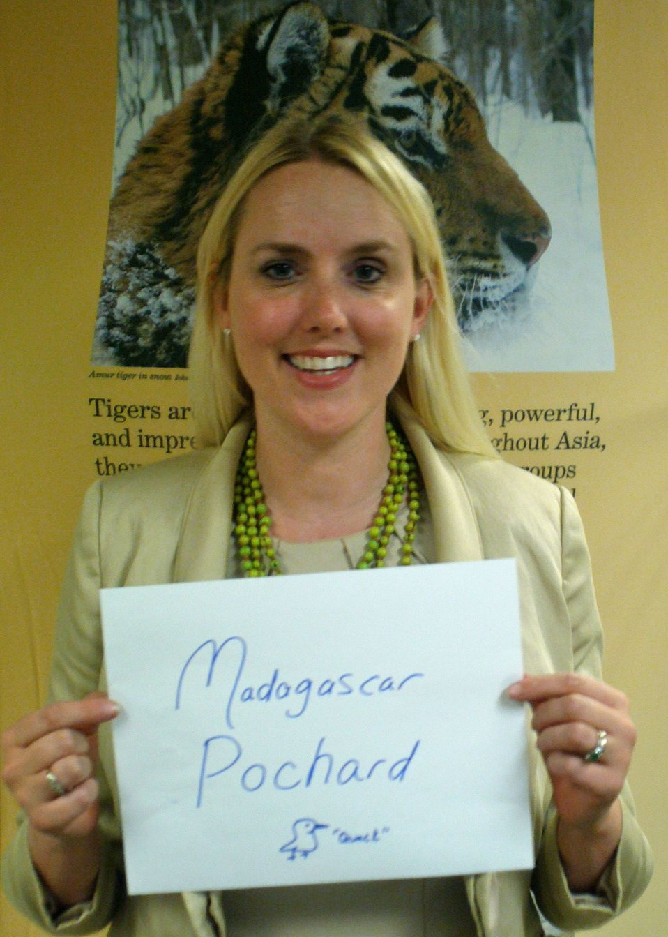 Tracy O'Toole, 'Madagascar Pochard,' Credit: USFWS