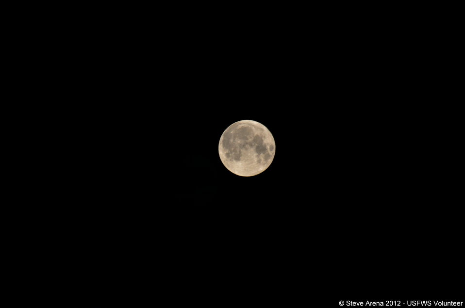 'Super' Moon taken from atop the observation tower 3:36 a.m. 06 May 2012 prior to Marshbird Survey