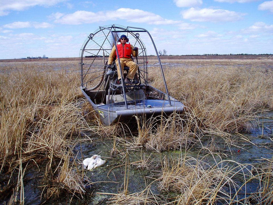 Avian Cholera Pickup with Airboat