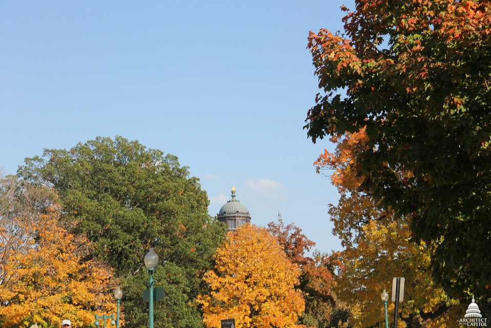 Library of Congress Jefferson Building in Fall