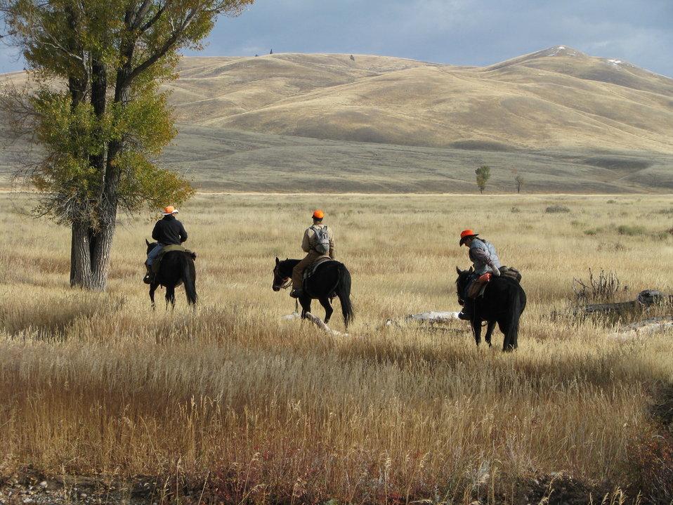Hunters Head into the Field
