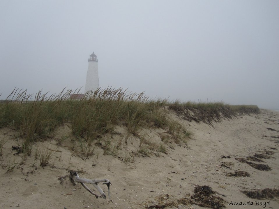 misty day on Nantucket NWR