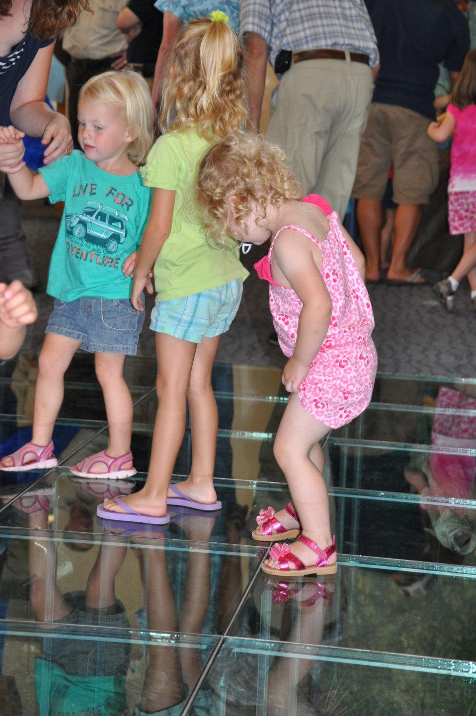 Looking at exhibit beneath glass floor