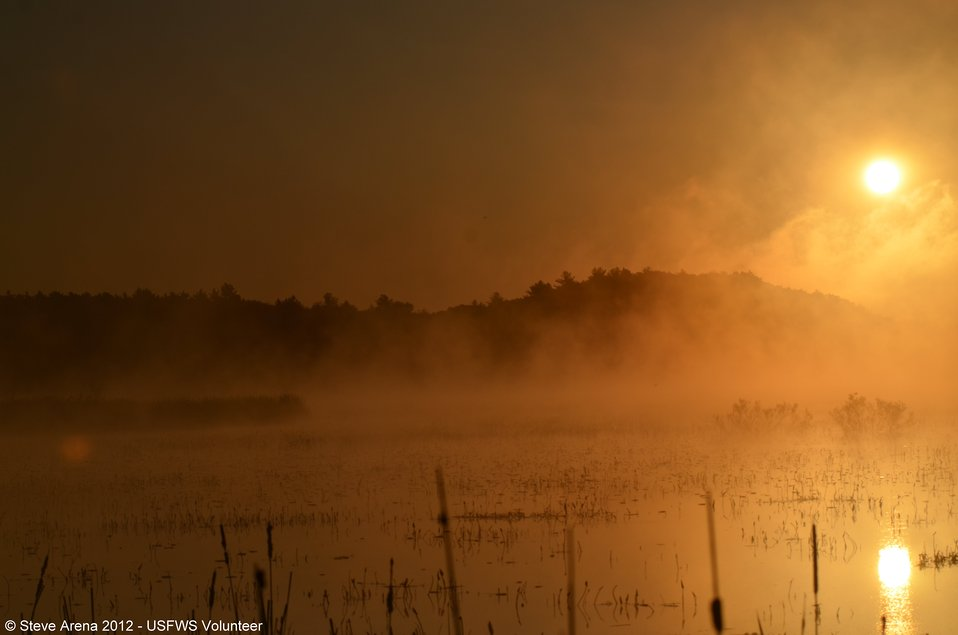Sun Up at Great Meadows NWR, Concord, MA