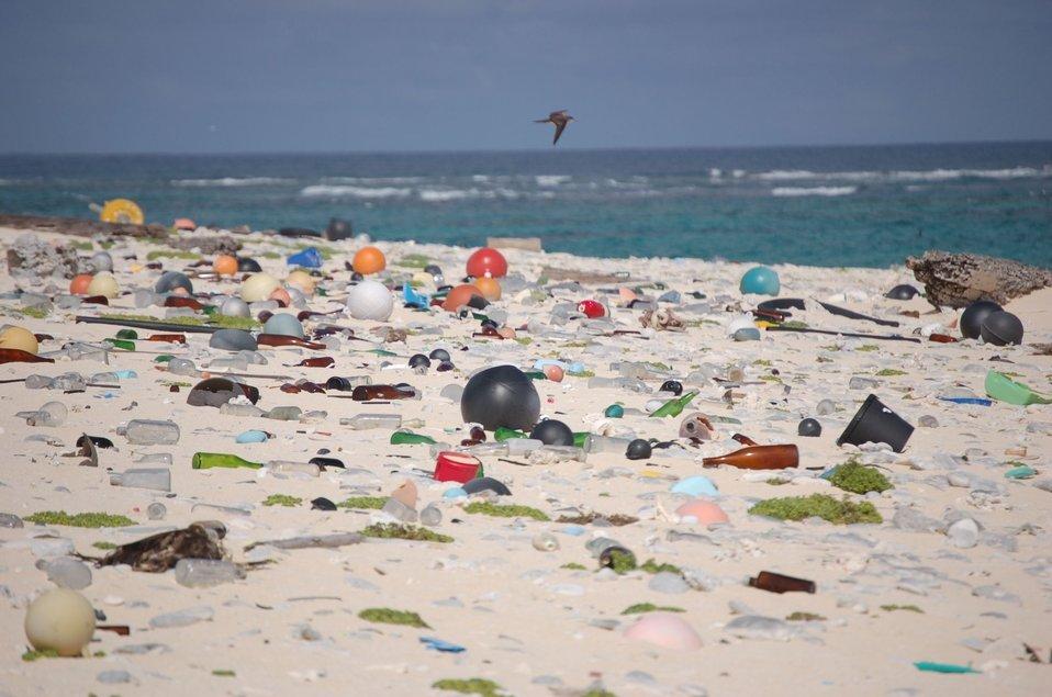 Beach strewn with plastic debris