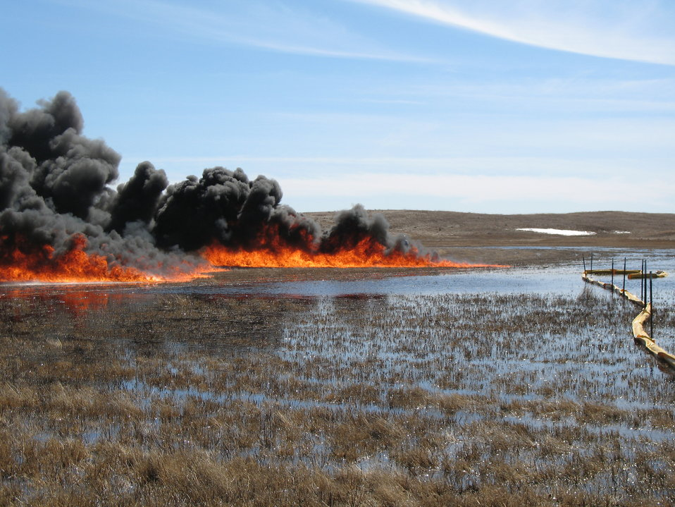 In situ Burn on Wetland
