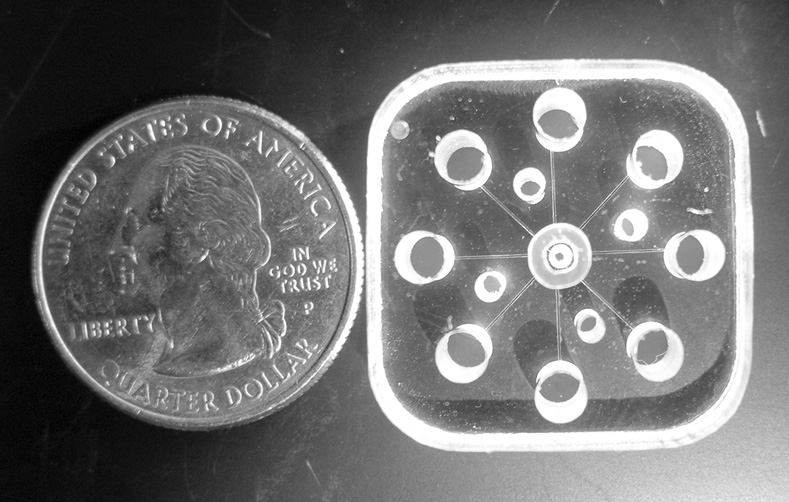 Lab-On-A-Chip; GEMBE