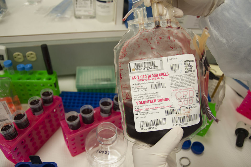 Blood Research: Saving Lives (8369)