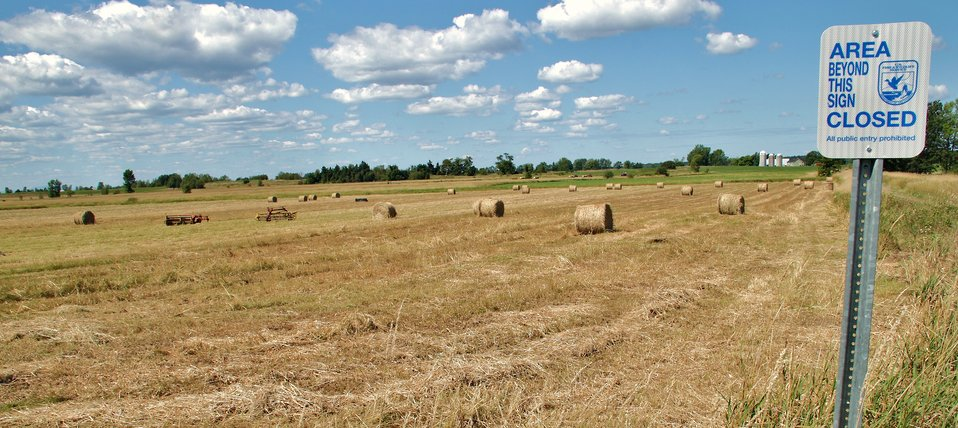 Missisquoi National Wildlife Refuge Haying grasslands