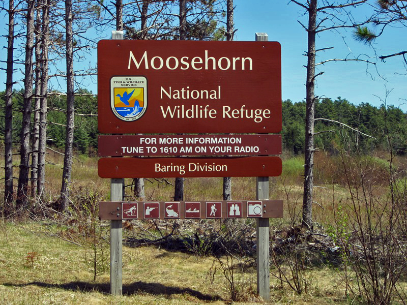 Moosehorn sign