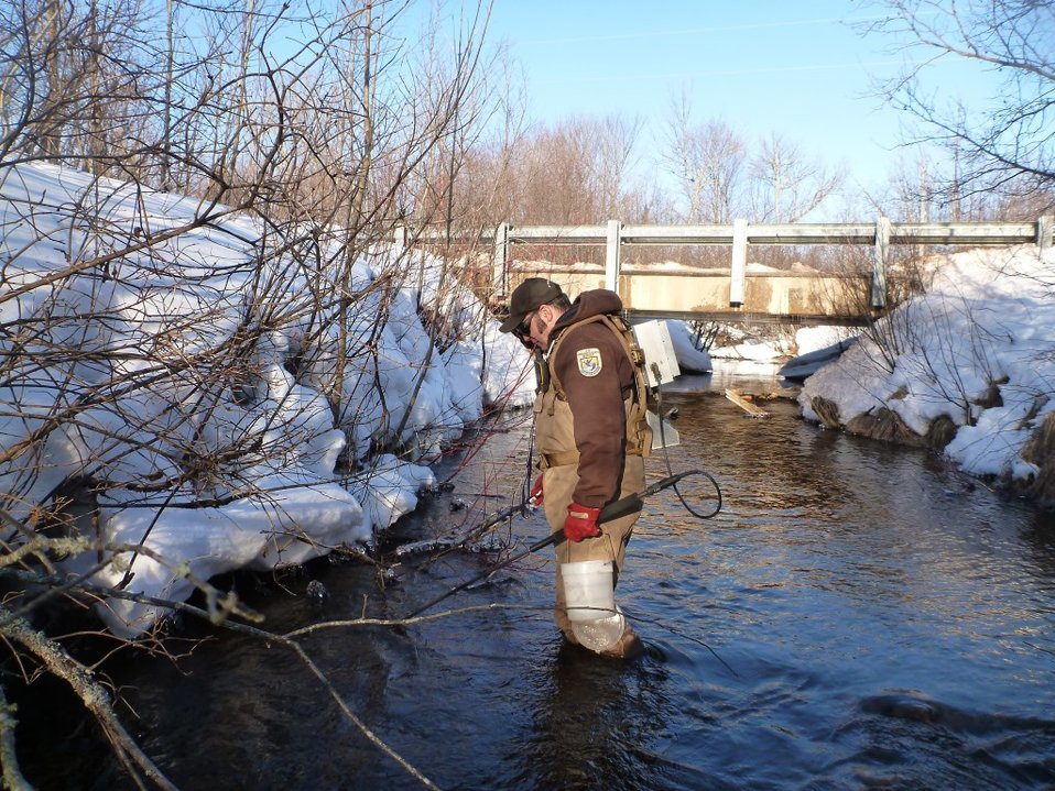 Service Employee Matt Symbal electrofishing in Wislon Creek, a tributary to the Big Garlic River, Marquette County, MI.