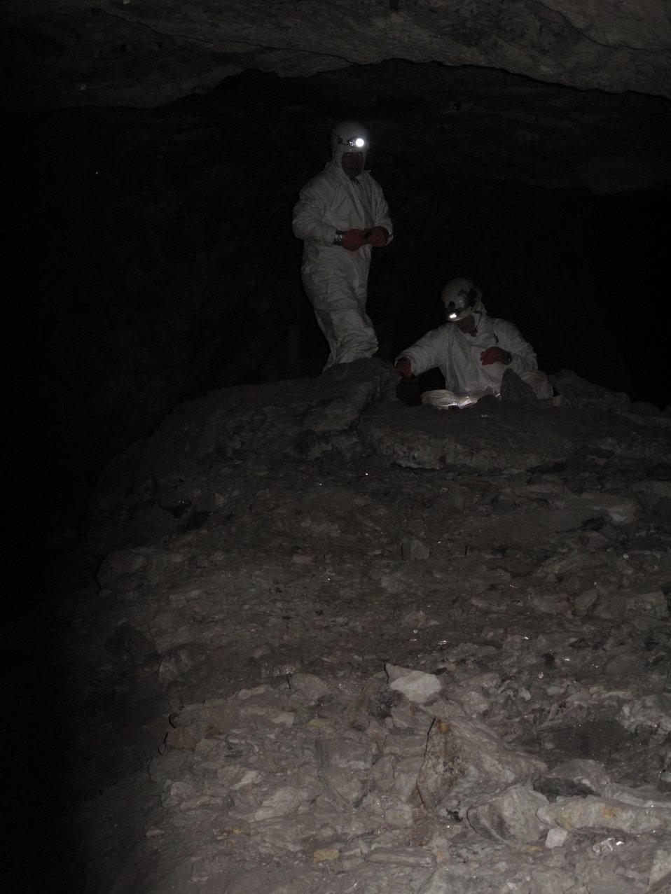 NCWRC biologists underground