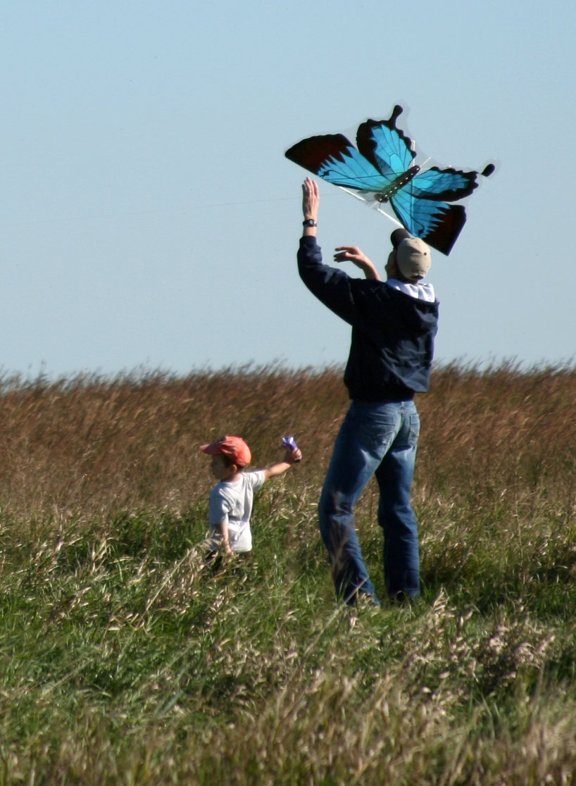 Man and Boy Fly a Kite