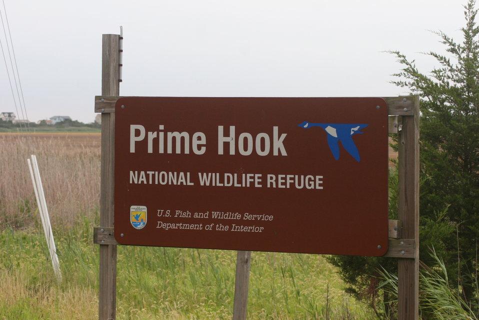Prime Hook NWR