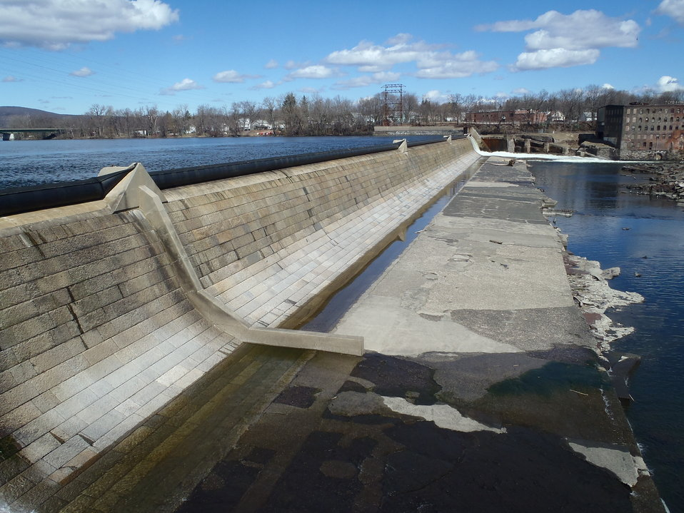 Large dams are barriers to fish