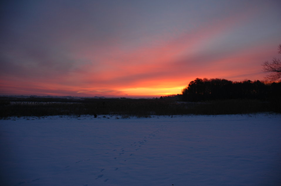 Photo of the Week - Sunrise at Prime Hook National Wildlife Refuge (DE)