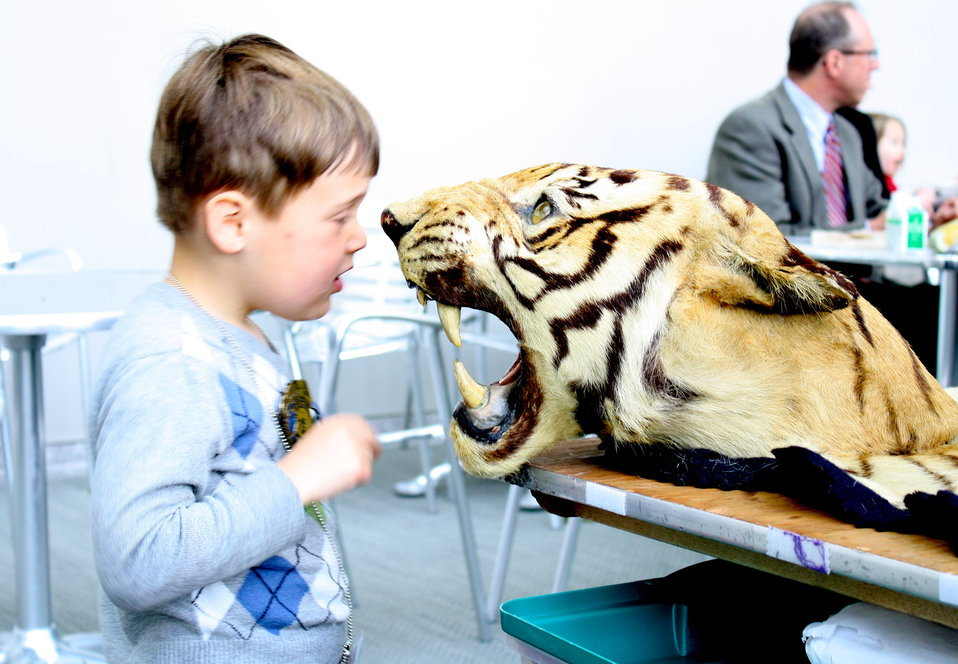 Boy and Tiger Head