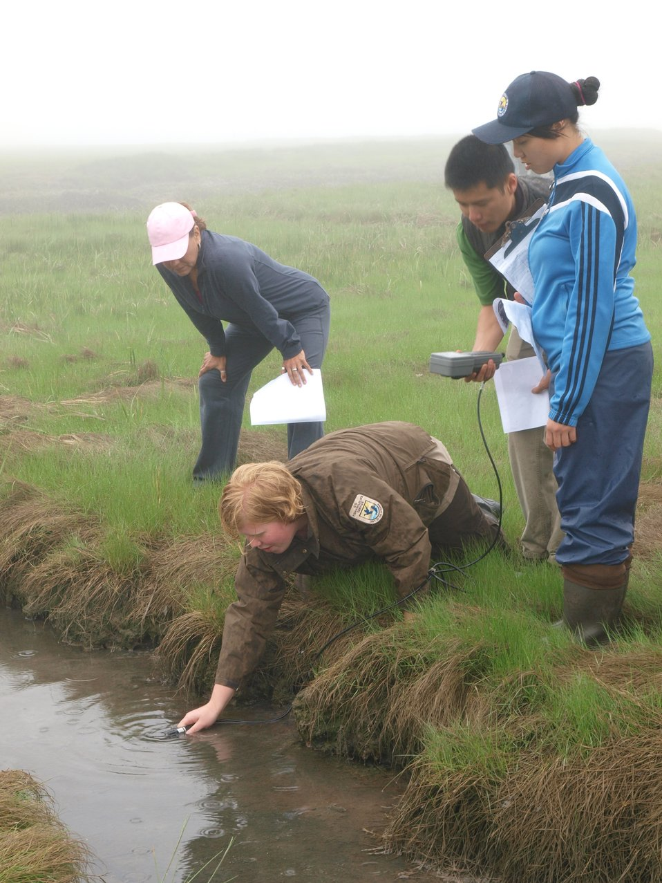 Learning how to measure salinity in a salt marsh