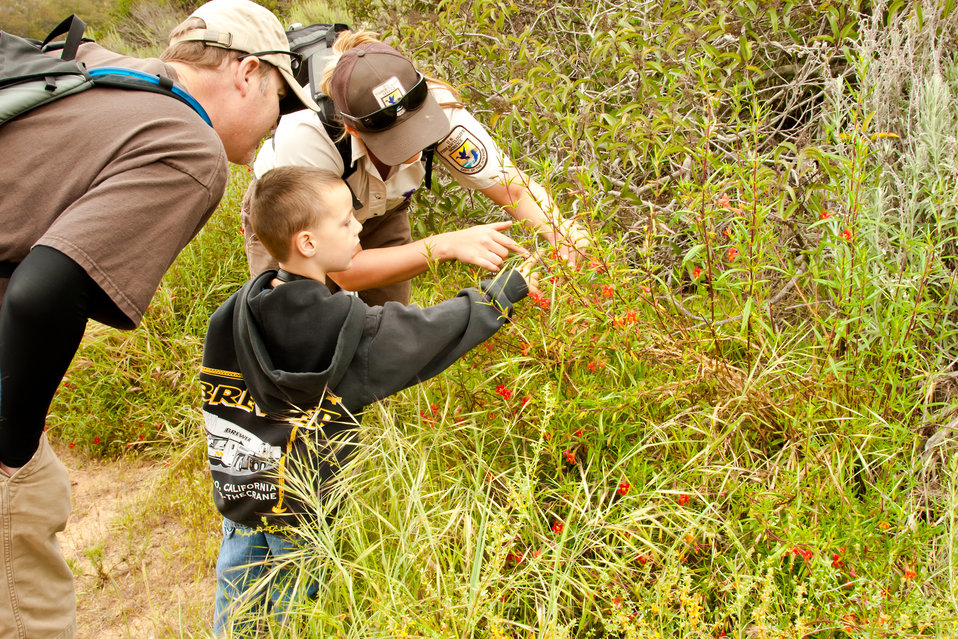 Refuge Interpretive Ranger shows visitors a special flower